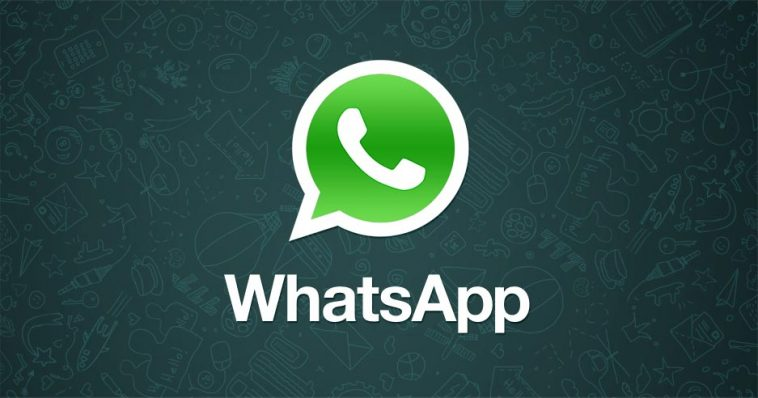 WhatsApp has not introduced any Pink version