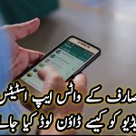 How to download a video from WhatsApp status?